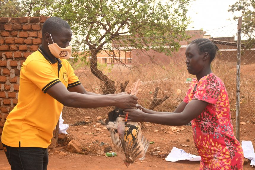 SAO gives out 2000 birds to 400 families in Abim