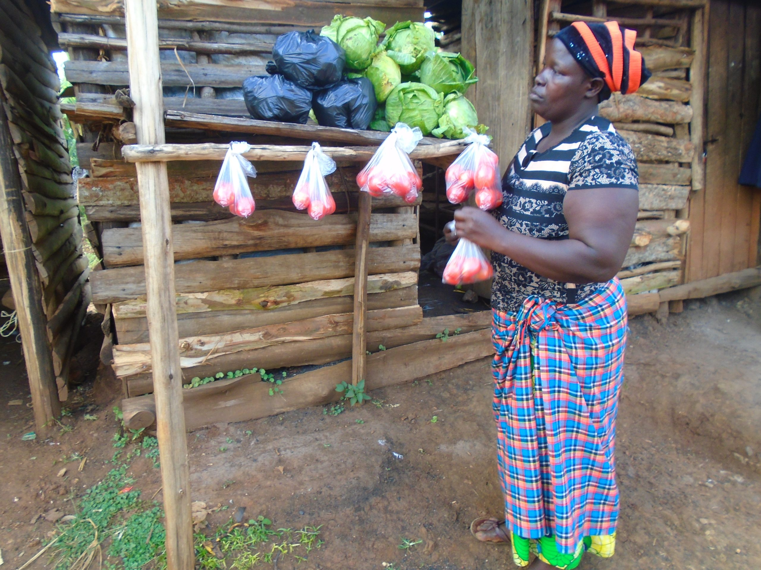 A vegetable business that has boosted the livelihood of a household